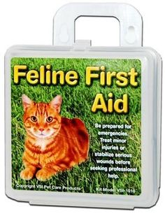 VSI Feline First Aid Kit with Plastic Case helps bring protection to cats. Contents are selected from researching the needs of cat owners, veterinarians, and cat lovers to ensure this kit will do the job. Emergency Preparation, Emergency Preparedness, Emergency Kits, Survival, Cat Vet, Pet Meds, Travel Center, Pet Travel, First Aid Kit