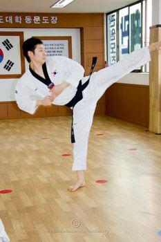 side kick, taekwondo kicks, taekwondo