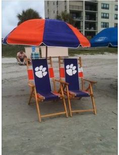 Tiger Beach pic credit CDH from Candy Herron