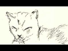 always be your friend Cat Sketch, Always Be, Sketches, Illustrations, Cats, Drawings, Gatos, Cat Doodle, Kitty Cats