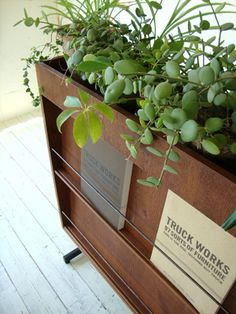 A great way to store magazines. Love the plants too. Can I get Kai to make this for me?