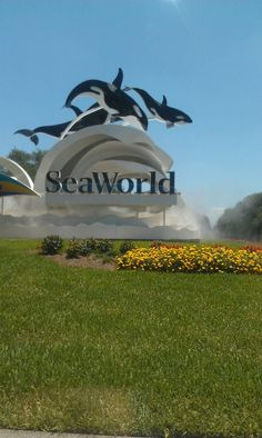 SeaWorld. I've been to the one in California and Florida :)