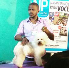 Pet Salon Tosa especializada é aqui no Pet Salon... Com Edgar Ferreira, profissional premiado em competições! Rua Lafaiete 1579 - Ribeirão Preto, (16) 3011-1420 @pet_salon  #ribs #ribeiraopreto #saopaulo #orlandia #oscarfreiresp #sertaozinho #cravinhos #petshop #serrana #shoppingiguatemi #love #limeira #pirassununga #saosimao #bonfimpaulista #veterinaria #clinicas #doglovers #dogs #dogsofinstagram #cats #photooftheday #brodowski #jardinopolis #altinopolis #morroagudo #sertaozinho…