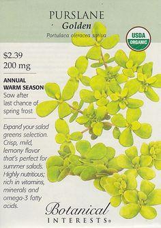 Organic Golden Purslane Seeds - 200 mg - Botanical Interests - $2.39