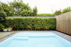 love the colour of this pool, super light blue Backyard Pool Designs, Swimming Pools Backyard, Pool Landscaping, Ficus Hedge, Pool Plants, Outdoor Glider, Simple Pool, Pool Colors, Adirondack Furniture