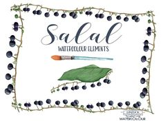 Salal Watercolour Elements by Linda K. Design on @creativemarket