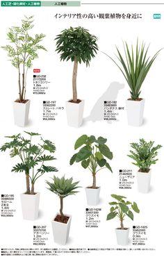 Plant Design, Garden Design, Big Indoor Plants, Dry Garden, Diy Plant Stand, House Design Photos, Bedroom Plants, Interior Plants, Foliage Plants