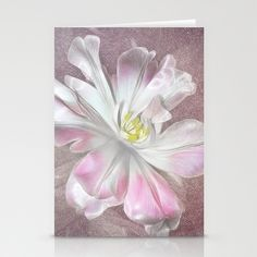 Tulip Stationery Cards by Fiona & Paul Photography and Digital Art - $12.00