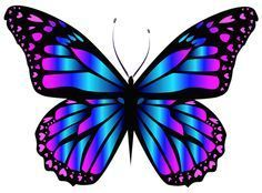 Blue and Purple Butterfly PNG Clipar Image (butterfly images)
