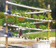 Vertical aquaponics growing system