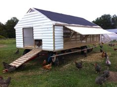 White mobile chicken house