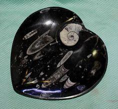Ammoniten-Teller in Herzform