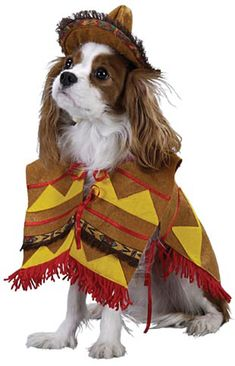 Yes, It Can Get Worse: Dressing Up Your Dog as a Racial Caricature at Halloween (click thru for analysis)