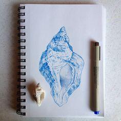 Inspiring Illustrations by Noel Pugh!