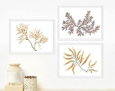 Items similar to Tropical Leaf Print Set - Housewarming gift, Watercolor Leaves / Any FOUR OR Botanical Prints, Minimal Wall Decor on Etsy Watercolor Leaves, Watercolor Print, Watercolor Paintings, Watercolor Paper, Shops, Tropical Leaves, Leaf Prints, Botanical Prints, House Warming