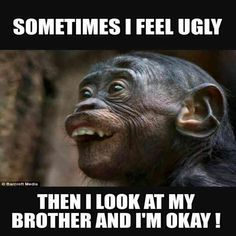 25 Funny Memes About Brothers and Touching Brother Quotes Anyone Who . - 25 funny memes about brothers and touching brother quotes Anyone who has a sibling can refer to it - Super Funny Memes, Crazy Funny Memes, Really Funny Memes, Stupid Memes, Funny Relatable Memes, Stupid Funny, Haha Funny, Funny Memes About Love, Funny Stuff