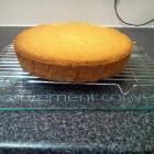 Recipe photo: 10 inch round tin sponge cake