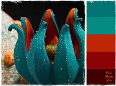 Color Palette: Blue, Orange