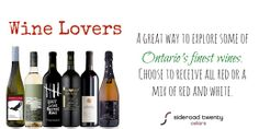 Try new wines and find a new favourite. We do the work to find the best - you do the enjoying. ~ sr20.ca