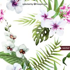 Hand painted tropical plants Free Vector