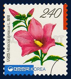 Definitive Postage Stamp, Mugunghwa, Flower, violet, red, yellow, green, 2004 11 01, 보통우표, 2004년 11월 01일, 2405, 무궁화(불새, 1송이), postage 우표