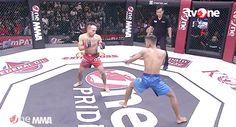 Martial Arts Probs