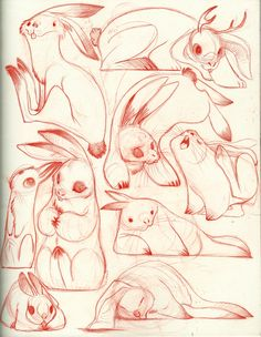 rabbits - pencil sketch ✤ || CHARACTER DESIGN REFERENCES | キャラクターデザイン • Find more at https://www.facebook.com/CharacterDesignReferences
