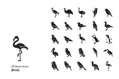 Birds vector icons by Jisun Park on @creativemarket
