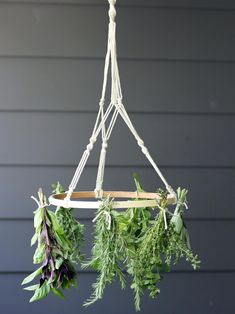 to Make a Macrame Herb-Drying Rack Enjoy the bounty of your summer herb garden all year long with this beautiful and functional drying mobile.Enjoy the bounty of your summer herb garden all year long with this beautiful and functional drying mobile. Hanging Drying Rack, Herb Drying Racks, Hanging Herbs, Diy Hanging, Drying Herbs, Diy Jardim, Herb Rack, Reggio Emilia, Herb Garden