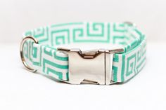 Summer Dog Collar in Turquoise and White on Etsy, $25.00