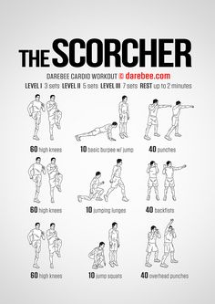 NEW: The Scorcher Workout #darebee #workout #fitness