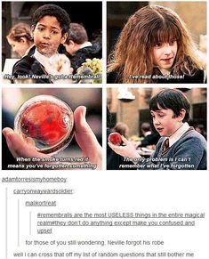 What Neville forgot in the first Movie