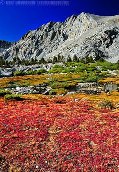 John Muir Wilderness | Muir Trail near the Bench Lake Ranger Station, John Muir Wilderness ...