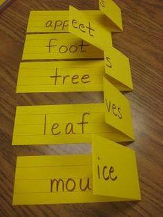 irregular plural noun foldables