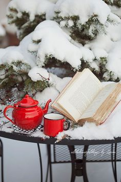winter tea - I love snow, but . I Love Winter, Winter Day, Winter Snow, Winter Season, Winter Christmas, Christmas Time, Cozy Winter, Winter Colors, Christmas Carol