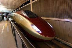 Free Gage Train - Kyuusyuu Shinkansen,JR Kyuusyuu - Japan