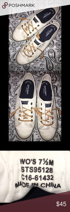 💁🏻WOMANS SPERRY!! 💁🏻WOMANS SPERRY SEACOAST CANVAS!!🎉✨    ✅Prices are negotiable: Please be considerate due to Poshmark fees. ✅No holds/No Trades ✅Please use offer button ✅No 🅿️🅿️ Sperry Shoes Sneakers