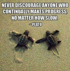 listen to Plato family of mine...