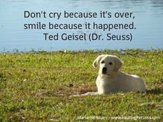 Subscribe to the Healing Pet Loss Podcast in iTunes for practical steps for coping with pet loss & comforting messages of love and peace from animals in the afterlife  https://itunes.apple.com/dk/podcast/healing-pet-loss/id955143165