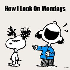 "How I look on Mondays.   (""☻☻☻ THE PEANUTS GANG ☻☻☻"")      --Peanuts Gang/Snoopy & Lucy"