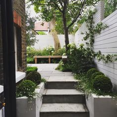 Pic of a small terraced garden that we designed andhellip