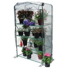"Early Start Greenhouse 4 Shelf - 66""H x 27""W x 19""D"