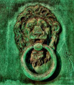 gorgeous green patina ~ bronze knocker on bronze door