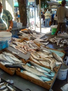 Buying Fish in the local market! Beach Villa, The Locals, Greece, Memories, Fish, Top, Image, Greece Country, Memoirs