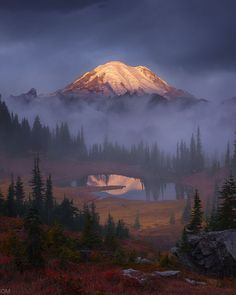 "{""user_id"": 323977904352397981, ""created_at_utc"": 1466584034, ""downvotes"": 0, ""is_community_pin"": true, ""score"": 5512, ""details"": ""Mount Rainier, Washington at sunrise in autumn [1200x866][OC] by Alex Noriega"", ""upvotes"": 5512}"