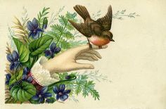 Victorian Hand with Robin and Violets Label - Journal Card ~  The Graphics Fairy