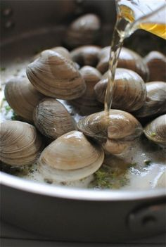 Beer steamed clams..my boy would love these