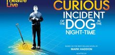 THE CURIOUS INCIDENT OF THE DOG IN THE NIGHT-TIME   The Grain Store At Ballymaloe Mark Haddon, Grain Store, Time Based, Night Time, Novels, Events, Dogs, Movie Posters, Film Poster