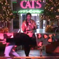 """Наблюдай за известным караоке клубом """"Cats Meow"""", переводится как (Кошки Мяу). Уже 25 лет считается лучшим в мире и не знаешь, кто будет выступать следующий"""