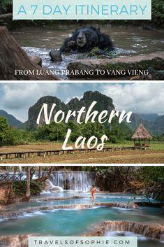 Northern Laos Itinerary: A Travel Guide. A full 7 day itinerary from Luang Prabang to Vang Vieng Source by Laos Travel, Asia Travel, Vietnam Travel, Vientiane, Travel Advisory, Luang Prabang, Water Activities, Travel Guides, Travel Tips